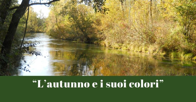 Workshop di fotografia paesaggistica e naturalistica